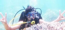 Kì thú với tour lặn biển Nha Trang