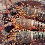 Tour du lịch Nha Trang – Bình Ba